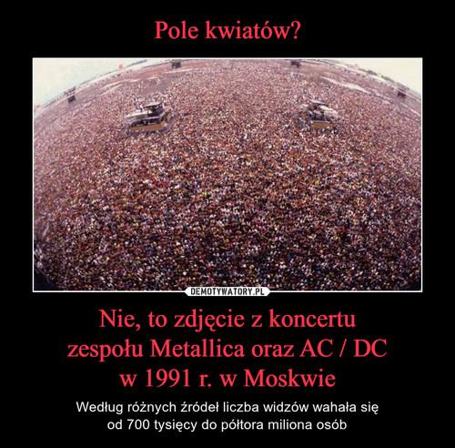 Pole kwiatów? Nie, to zdjęcie z koncertu zespołu Metallica oraz AC / DC w 1991 r. w Moskwie