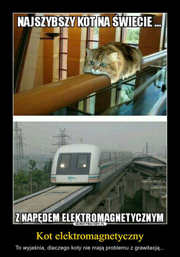 Kot elektromagnetyczny – To wyjaśnia, dlaczego koty nie mają problemu z grawitacją...