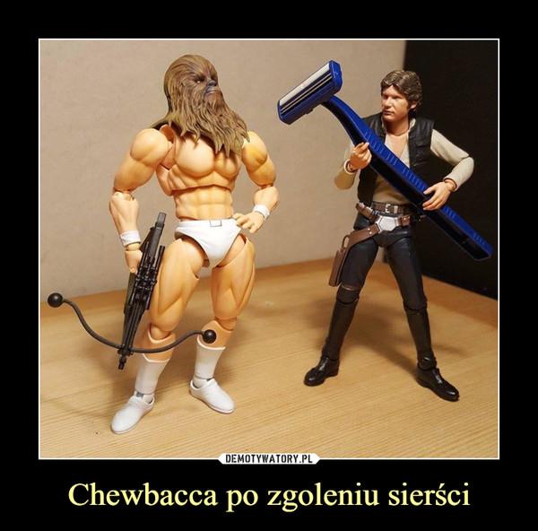 Chewbacca po zgoleniu sierści –