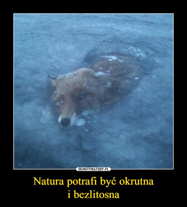 Natura potrafi być okrutnai bezlitosna –