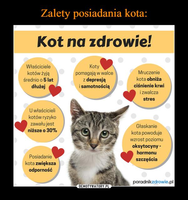 –  Kot na zdrowie! Właściciele Koty, kotów żyją pomagają w walce Mruczenie średnio o 5 lat z depresją kota obniża dłużej i samotnością ciśnienie krwi  i zwalcza stres U właścicieli kotów ryzyko zawału jest niższe o 30% Głaskanie kota powoduje wzrost poziomu oksytocyny - hormonu szczęście Posiadanie kota zwiększa odporność