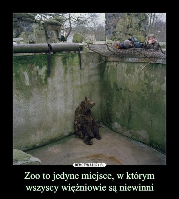 Zoo to jedyne miejsce, w którym wszyscy więźniowie są niewinni –