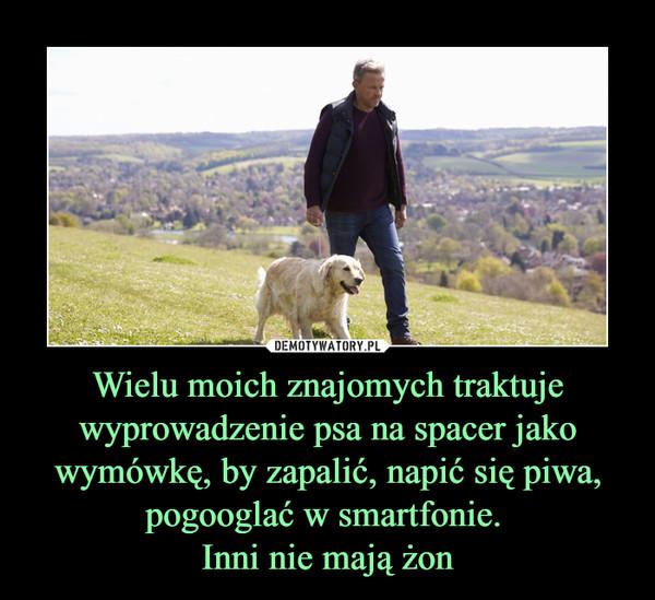 Wielu moich znajomych traktuje wyprowadzenie psa na spacer jako wymówkę, by zapalić, napić się piwa, pogooglać w smartfonie. Inni nie mają żon –
