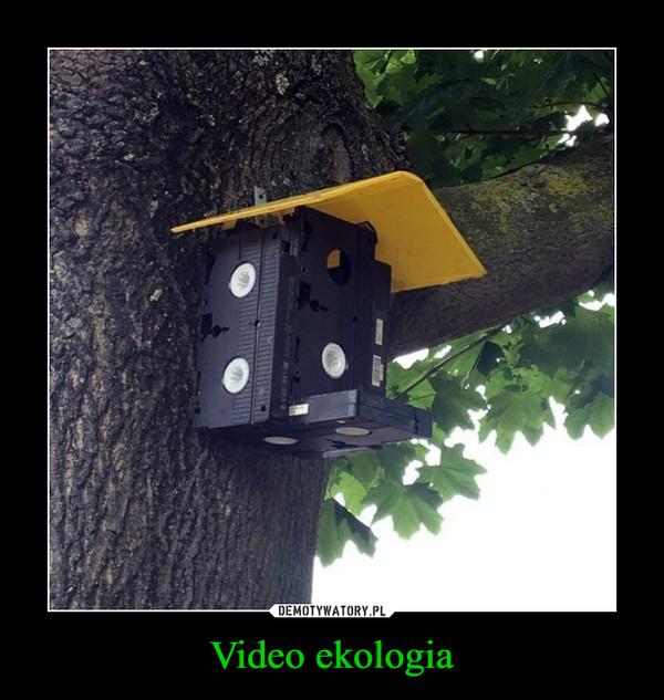 Video ekologia –