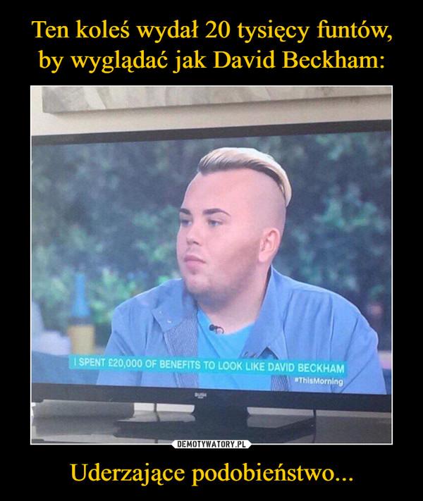 Uderzające podobieństwo... –  I SPENT Ł20,0000 OF BENEFITS TO LOOK LIKE DAVID BECKHAM