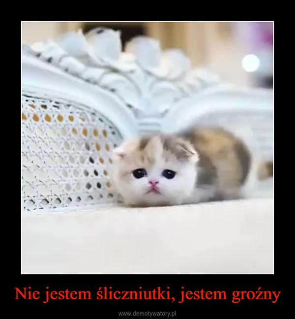 Nie jestem śliczniutki, jestem groźny –