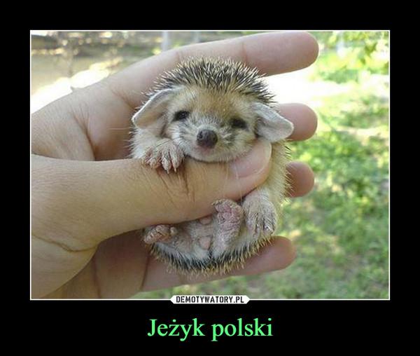 Jeżyk polski –