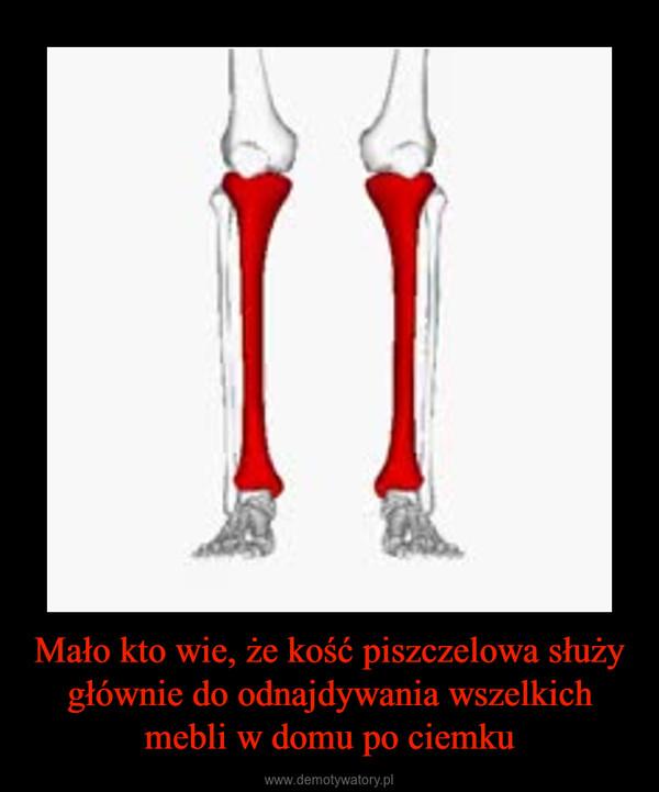 Mało kto wie, że kość piszczelowa służy głównie do odnajdywania wszelkich mebli w domu po ciemku –