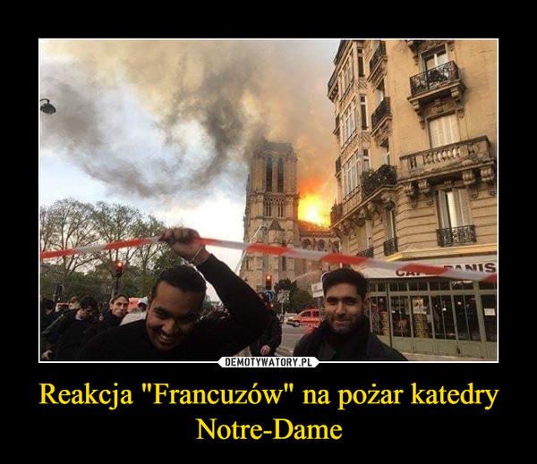 "Reakcja ""Francuzów"" na pożar katedry Notre-Dame –"