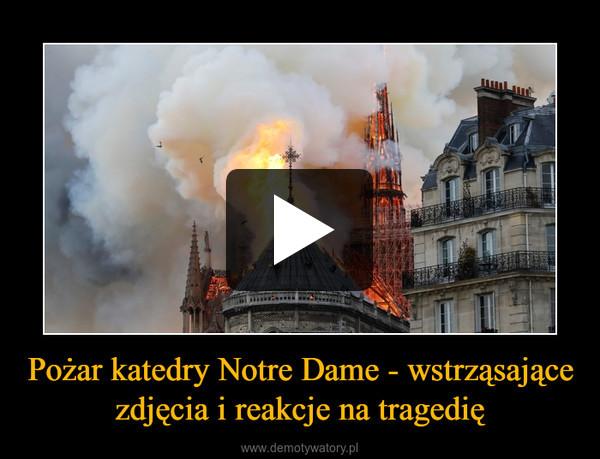Pożar katedry Notre Dame - wstrząsające zdjęcia i reakcje na tragedię –