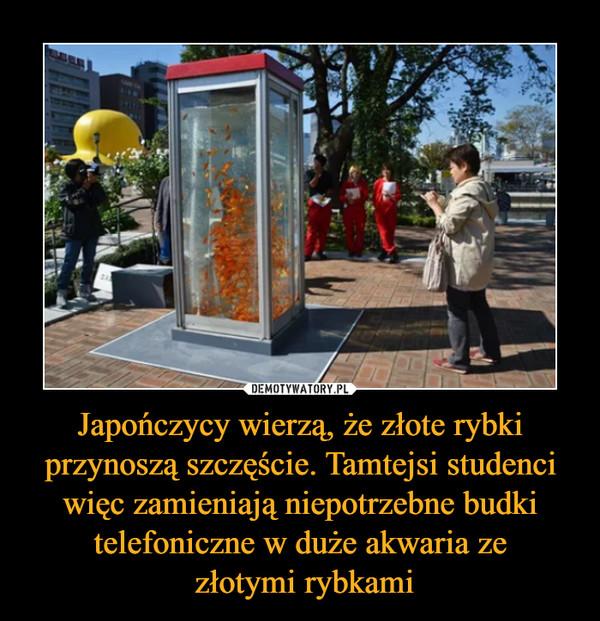 Japończycy wierzą, że złote rybki przynoszą szczęście. Tamtejsi studenci więc zamieniają niepotrzebne budki telefoniczne w duże akwaria ze złotymi rybkami –