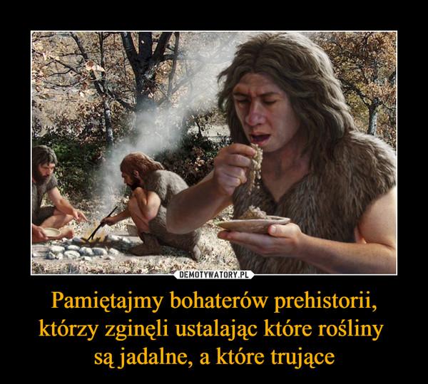 Pamiętajmy bohaterów prehistorii, którzy zginęli ustalając które rośliny są jadalne, a które trujące –