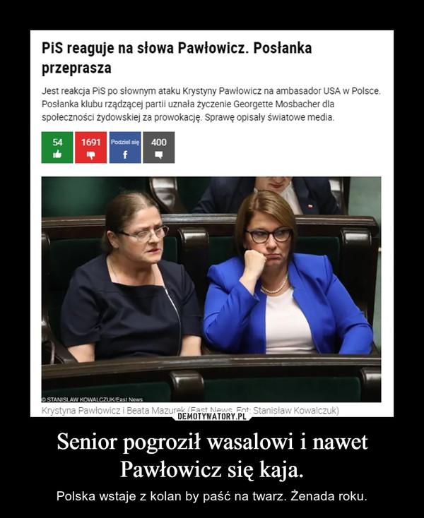 Senior pogroził wasalowi i nawet Pawłowicz się kaja. – Polska wstaje z kolan by paść na twarz. Żenada roku.