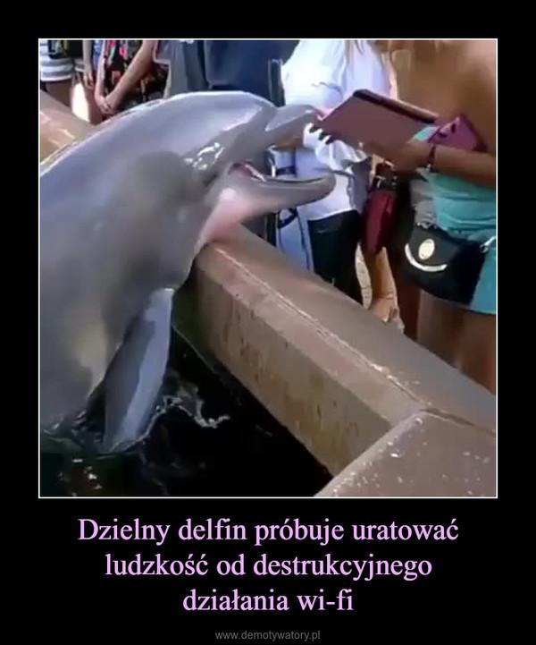 Dzielny delfin próbuje uratować ludzkość od destrukcyjnegodziałania wi-fi –