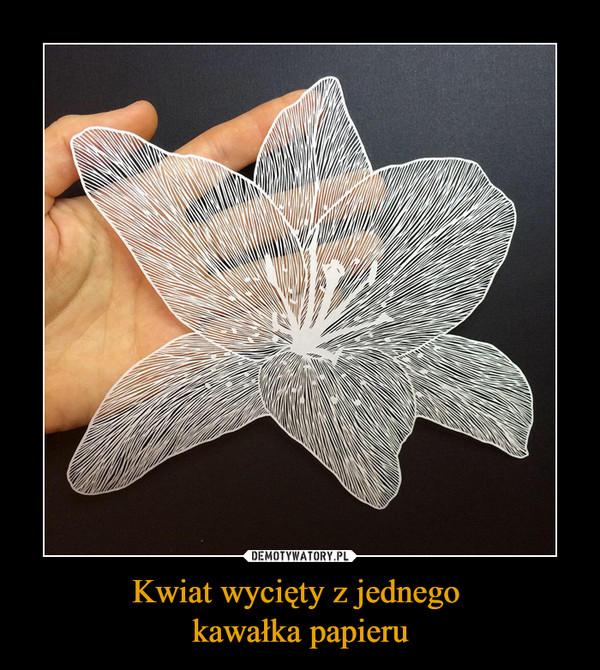 Kwiat wycięty z jednego kawałka papieru –