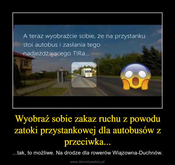 Wyobraź sobie zakaz ruchu z powodu zatoki przystankowej dla autobusów z przeciwka... – ...tak, to możliwe. Na drodze dla rowerów Wiązowna-Duchnów.