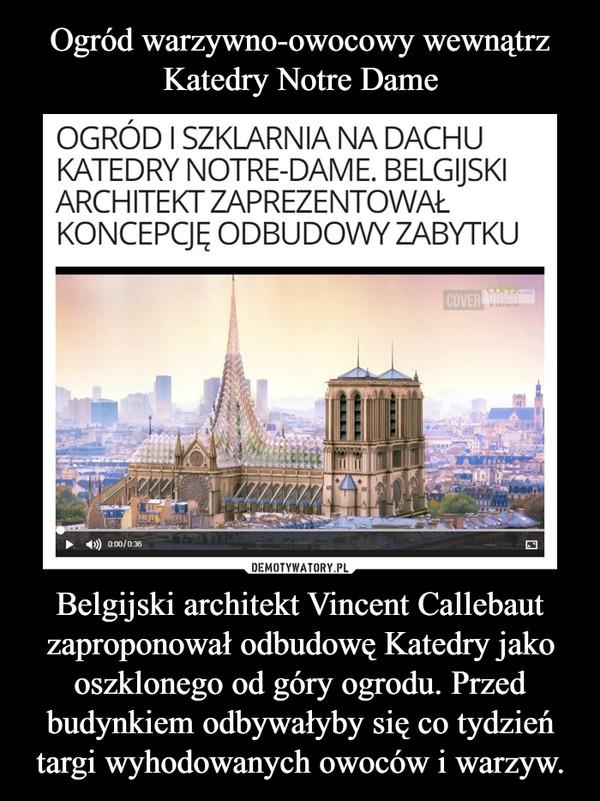 Belgijski architekt Vincent Callebaut zaproponował odbudowę Katedry jako oszklonego od góry ogrodu. Przed budynkiem odbywałyby się co tydzień targi wyhodowanych owoców i warzyw. –