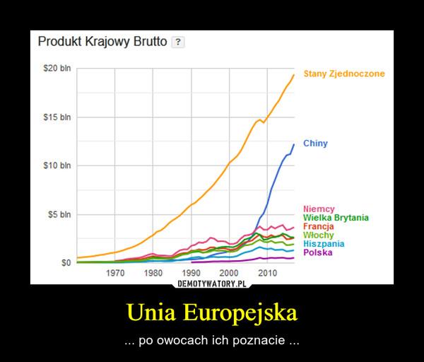 Unia Europejska – ... po owocach ich poznacie ...