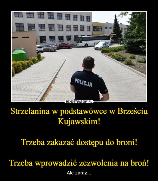 Strzelanina w podstawówce w Brześciu Kujawskim!Trzeba zakazać dostępu do broni!Trzeba wprowadzić zezwolenia na broń! – Ale zaraz...