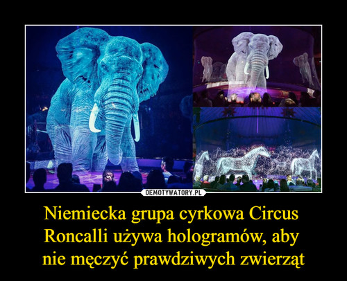 Niemiecka grupa cyrkowa Circus  Roncalli używa hologramów, aby  nie męczyć prawdziwych zwierząt