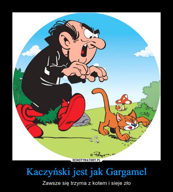 Kaczyński jest jak Gargamel – Zawsze się trzyma z kotem i sieje zło