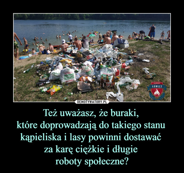 Też uważasz, że buraki, które doprowadzają do takiego stanu kąpieliska i lasy powinni dostawać za karę ciężkie i długie roboty społeczne? –