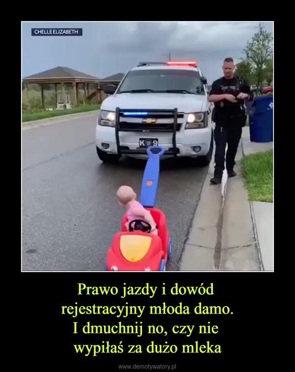 Prawo jazdy i dowód rejestracyjny młoda damo.I dmuchnij no, czy nie wypiłaś za dużo mleka –
