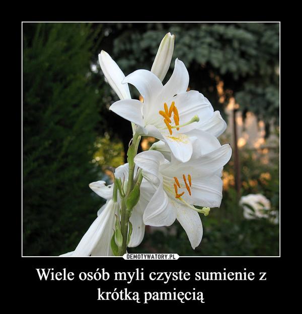 Wiele osób myli czyste sumienie z krótką pamięcią –