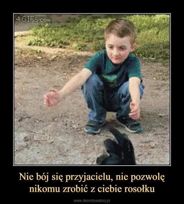Nie bój się przyjacielu, nie pozwolę nikomu zrobić z ciebie rosołku –