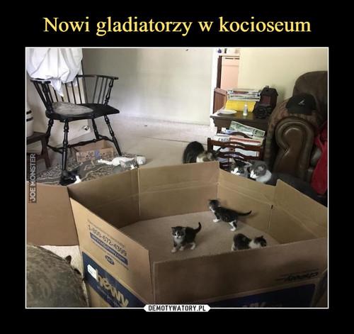 Nowi gladiatorzy w kocioseum