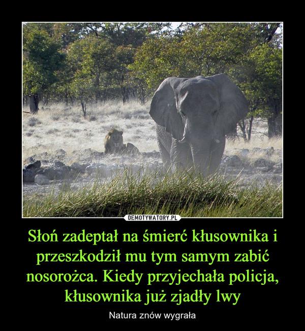 Słoń zadeptał na śmierć kłusownika i przeszkodził mu tym samym zabić nosorożca. Kiedy przyjechała policja, kłusownika już zjadły lwy – Natura znów wygrała