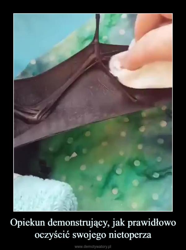 Opiekun demonstrujący, jak prawidłowo oczyścić swojego nietoperza –