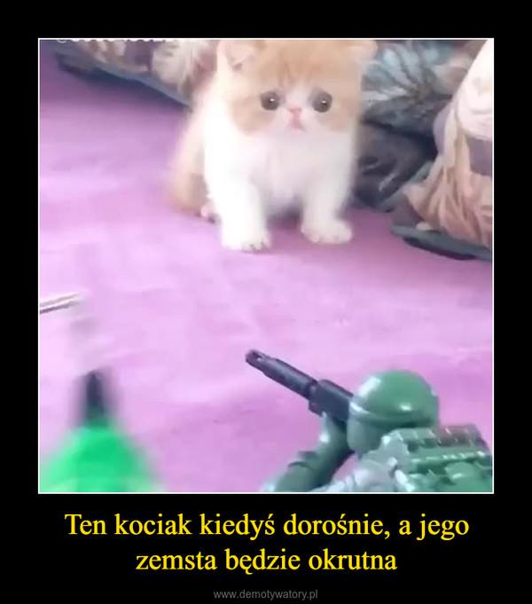 Ten kociak kiedyś dorośnie, a jego zemsta będzie okrutna –