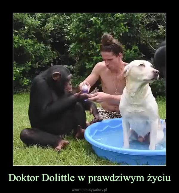 Doktor Dolittle w prawdziwym życiu –