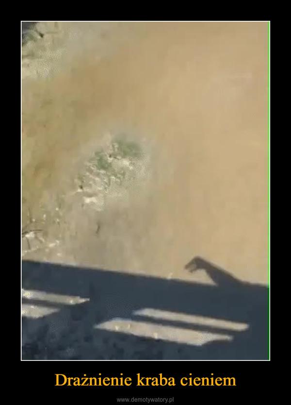 Drażnienie kraba cieniem –