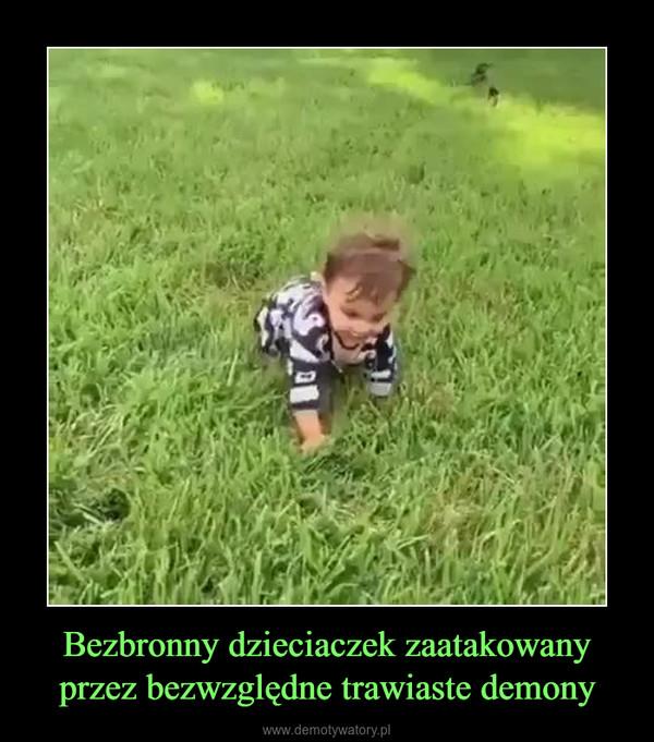 Bezbronny dzieciaczek zaatakowany przez bezwzględne trawiaste demony –