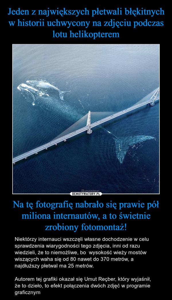 Na tę fotografię nabrało się prawie pół miliona internautów, a to świetnie zrobiony fotomontaż! – Niektórzy internauci wszczęli własne dochodzenie w celu sprawdzenia wiarygodności tego zdjęcia, inni od razu wiedzieli, że to niemożliwe, bo  wysokość wieży mostów wiszących waha się od 80 nawet do 370 metrów, a najdłuższy płetwal ma 25 metrów.Autorem tej grafiki okazał się Umut Reçber, który wyjaśnił, że to dzieło, to efekt połączenia dwóch zdjęć w programie graficznym