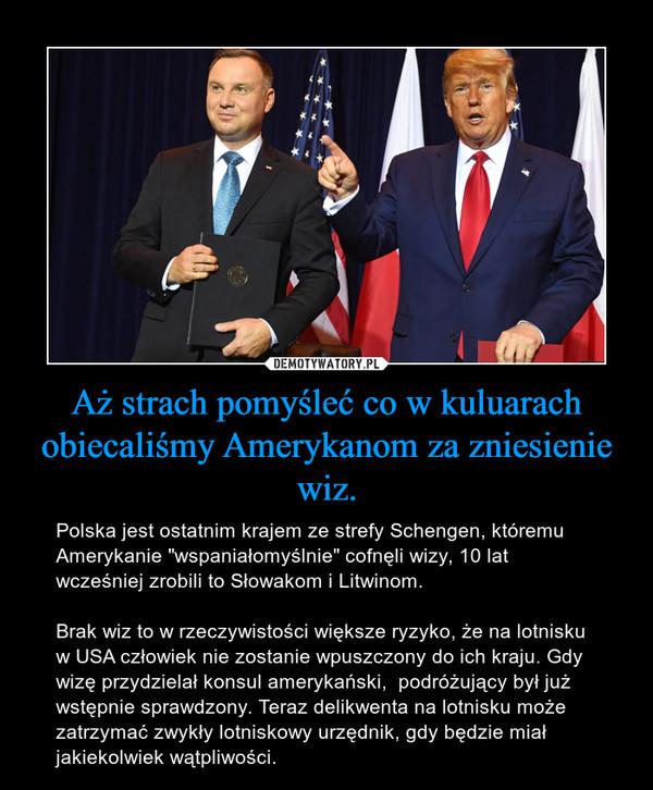 """Aż strach pomyśleć co w kuluarach obiecaliśmy Amerykanom za zniesienie wiz. – Polska jest ostatnim krajem ze strefy Schengen, któremu Amerykanie """"wspaniałomyślnie"""" cofnęli wizy, 10 lat wcześniej zrobili to Słowakom i Litwinom.Brak wiz to w rzeczywistości większe ryzyko, że na lotnisku w USA człowiek nie zostanie wpuszczony do ich kraju. Gdy wizę przydzielał konsul amerykański,  podróżujący był już wstępnie sprawdzony. Teraz delikwenta na lotnisku może zatrzymać zwykły lotniskowy urzędnik, gdy będzie miał jakiekolwiek wątpliwości."""