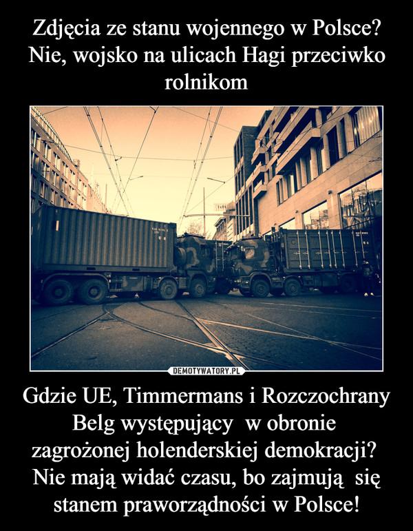 Gdzie UE, Timmermans i Rozczochrany Belg występujący  w obronie zagrożonej holenderskiej demokracji? Nie mają widać czasu, bo zajmują  się stanem praworządności w Polsce! –