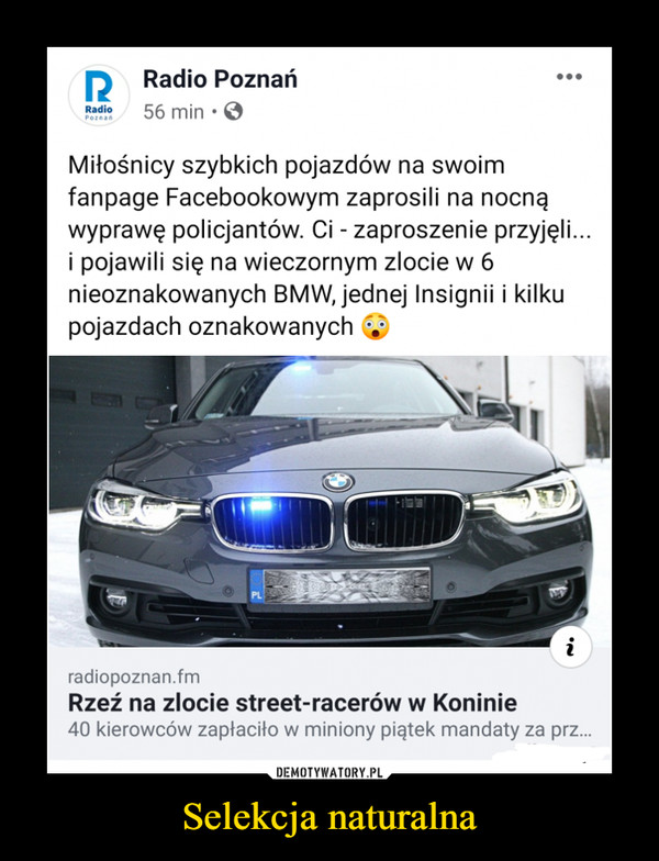Selekcja naturalna –  Radio Radio Poznań 56 min • Miłośnicy szybkich pojazdów na swoim fanpage Facebookowym zaprosili na nocną wyprawę policjantów. Ci - zaproszenie przyjęli... i pojawili się na wieczornym zlocie w 6 nieoznakowanych BMW, jednej Insignii i kilku pojazdach oznakowanych radiopoznan.fm Rzeź na zlocie street-racerów w Koninie 40 kierowców zapłaciło w miniony piątek mandaty za prz...