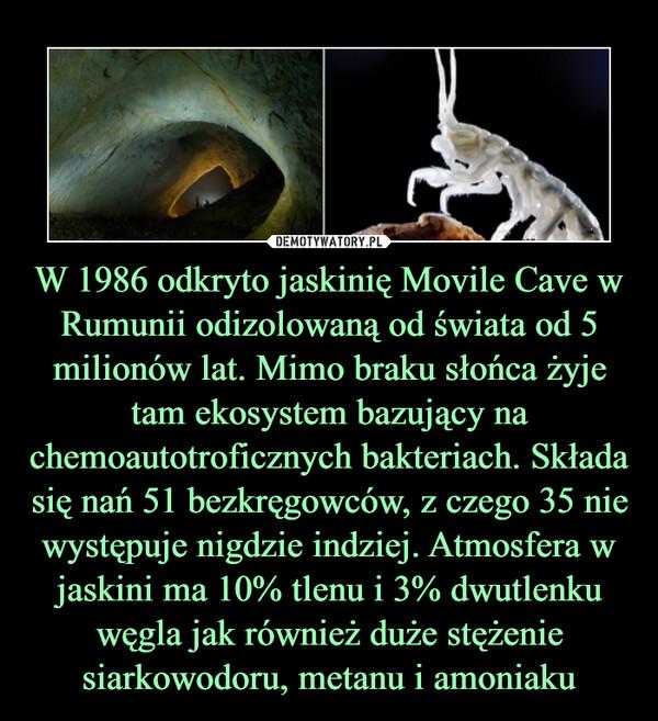 W 1986 odkryto jaskinię Movile Cave w Rumunii odizolowaną od świata od 5 milionów lat. Mimo braku słońca żyje tam ekosystem bazujący na chemoautotroficznych bakteriach. Składa się nań 51 bezkręgowców, z czego 35 nie występuje nigdzie indziej. Atmosfera w jaskini ma 10% tlenu i 3% dwutlenku węgla jak również duże stężenie siarkowodoru, metanu i amoniaku –