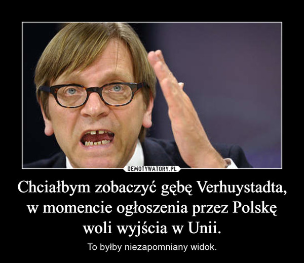 Chciałbym zobaczyć gębę Verhuystadta, w momencie ogłoszenia przez Polskę woli wyjścia w Unii. – To byłby niezapomniany widok.