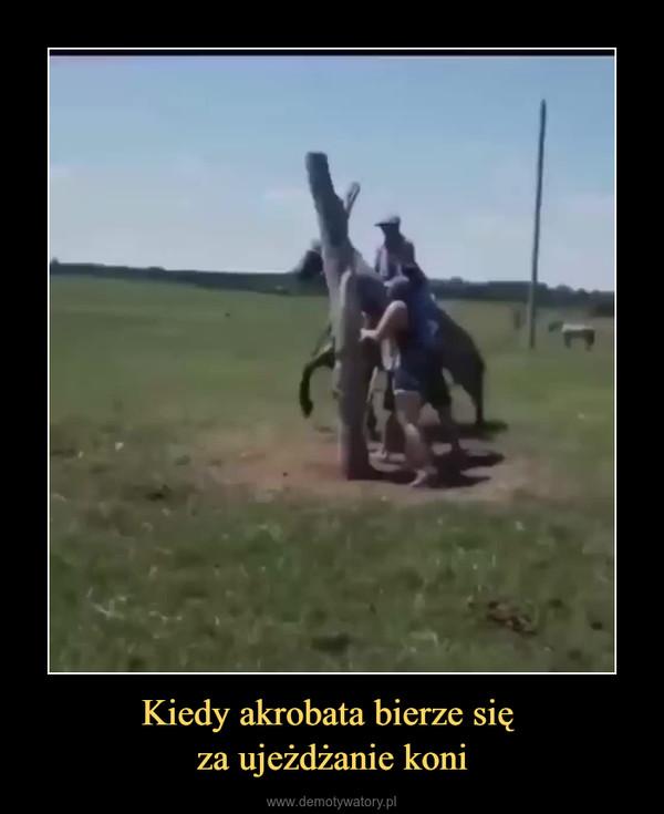 Kiedy akrobata bierze się za ujeżdżanie koni –