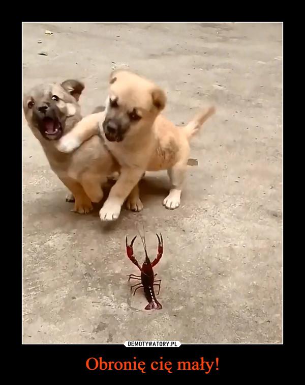 Obronię cię mały! –