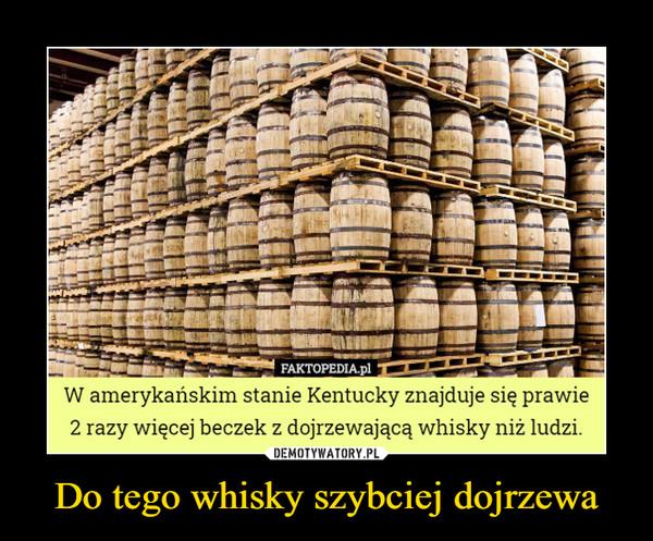 Do tego whisky szybciej dojrzewa –  W amerykańskim stanie Kentucky znajduje się prawie 2 razy więcej beczek z dojrzewającą whisky niż ludzi