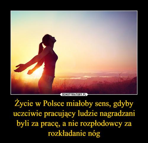 Życie w Polsce miałoby sens, gdyby uczciwie pracujący ludzie nagradzani byli za pracę, a nie rozpłodowcy za rozkładanie nóg