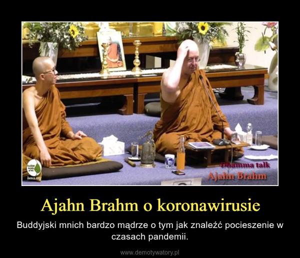 Ajahn Brahm o koronawirusie – Buddyjski mnich bardzo mądrze o tym jak znaleźć pocieszenie w czasach pandemii.