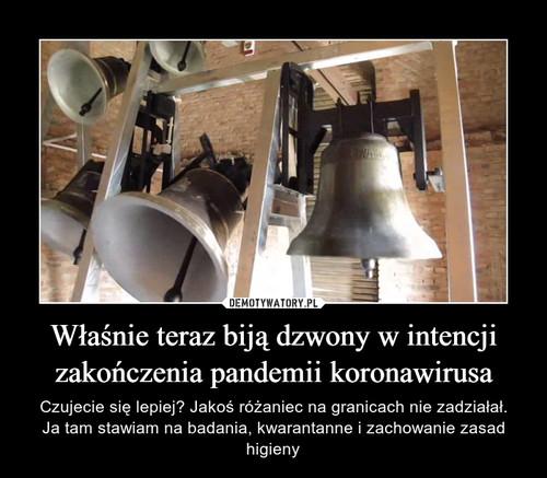Właśnie teraz biją dzwony w intencji zakończenia pandemii koronawirusa