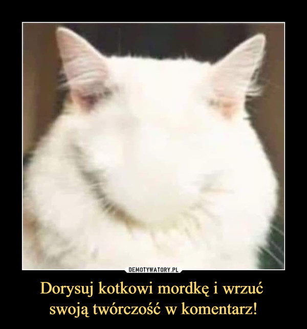 Dorysuj kotkowi mordkę i wrzuć swoją twórczość w komentarz! –