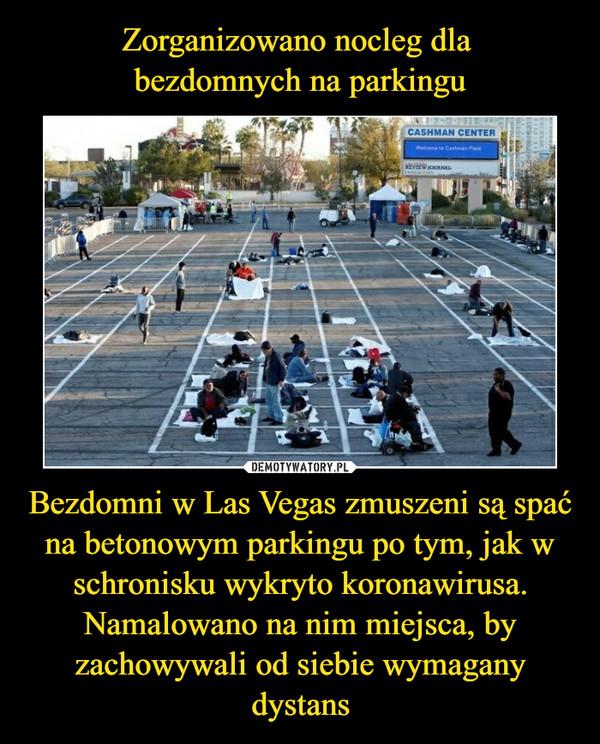 Bezdomni w Las Vegas zmuszeni są spać na betonowym parkingu po tym, jak w schronisku wykryto koronawirusa. Namalowano na nim miejsca, by zachowywali od siebie wymagany dystans –